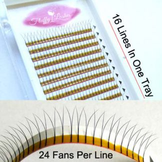 2D Volume Eyelash Extensions