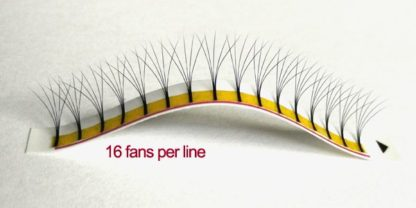 5D Eyelash Extensions