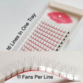 4d rootless wide eyelash fans