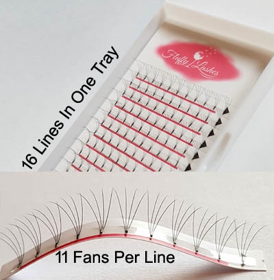 4d rootless wide eyelash fans
